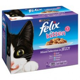 Felix Mixed Pouches - Kitten